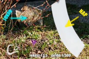 tavasz-werk